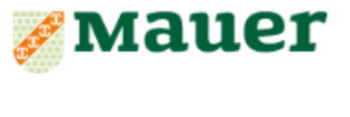 Mauer GmbH